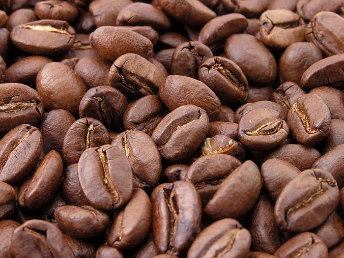 Kaffee & Trading